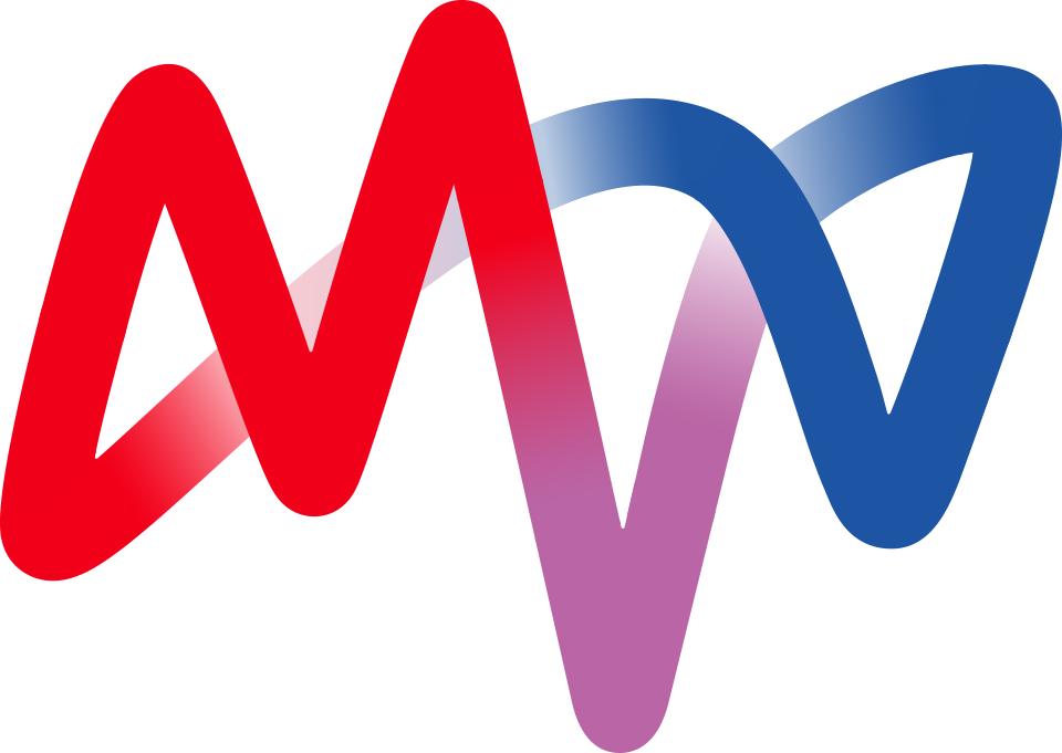 MVV logo ecademy kunde erfolgsgeschichte